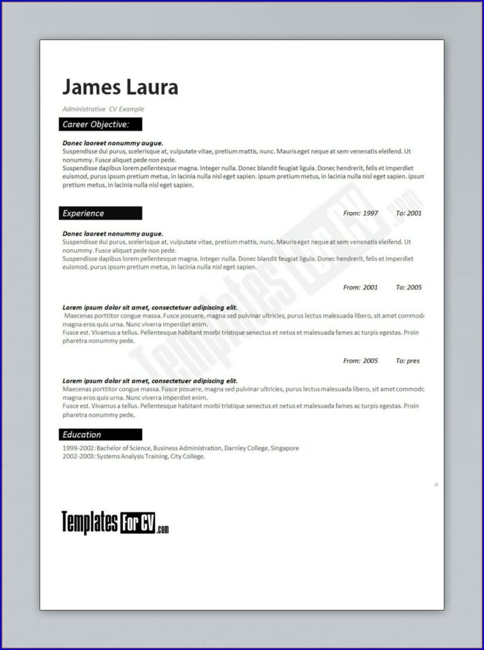 Resume Format Pdf Download For Accountant