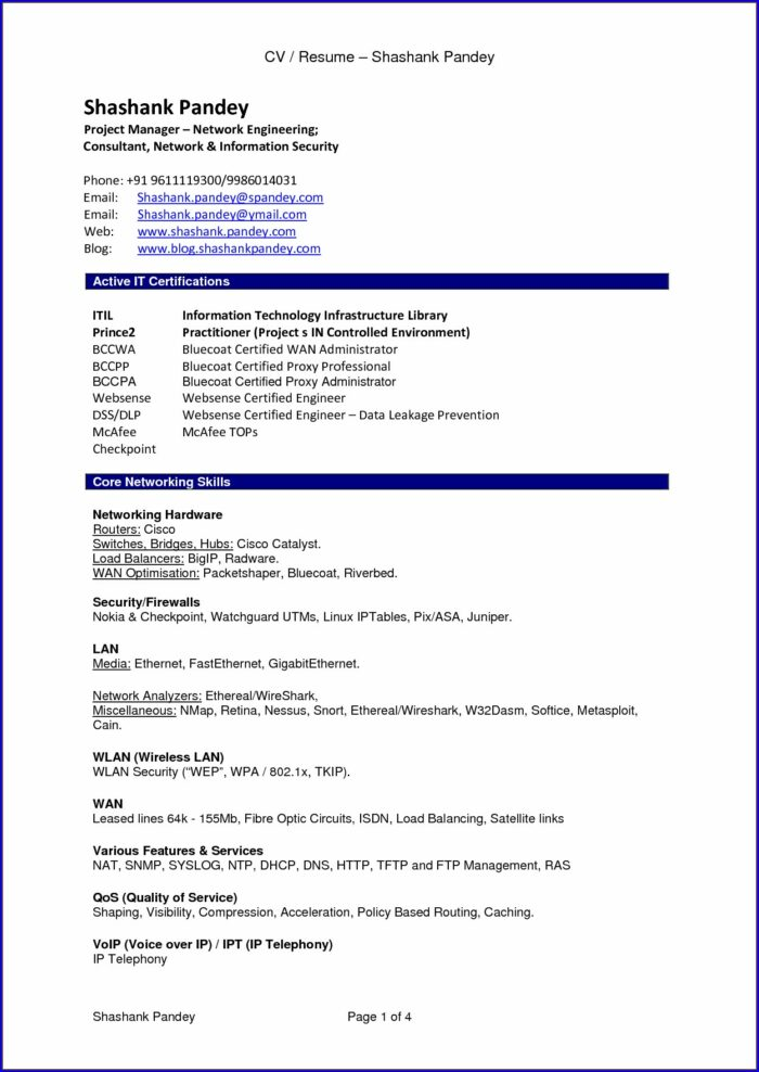 Resume Format Pdf For Freshers Free Download