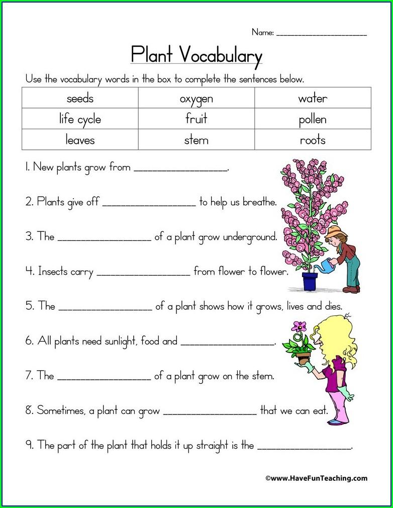 Science Worksheets For Grade 1 Plants Pdf
