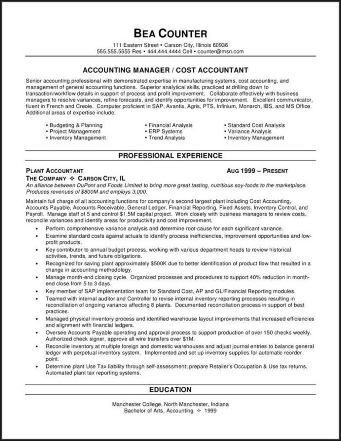 Senior Accountant Professional Resume Sample
