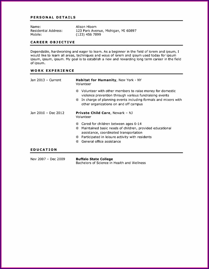 Simple First Job Beginner Resume Template
