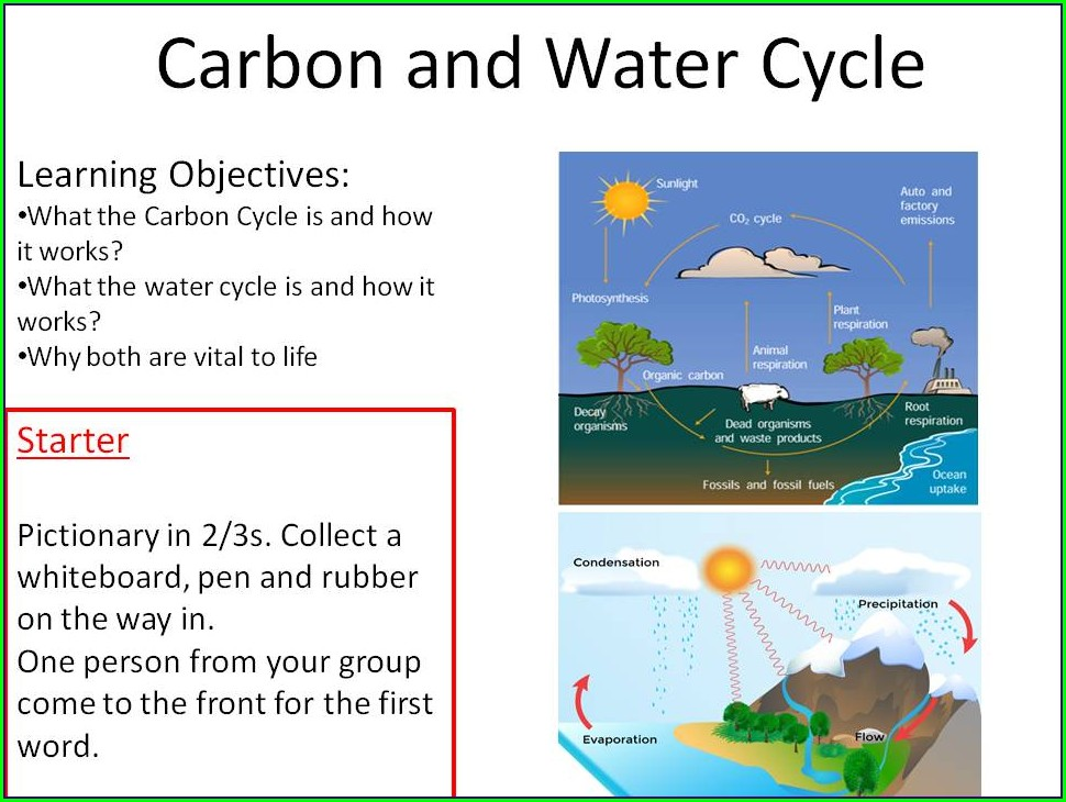 The Water Cycle Worksheet Answers Biology