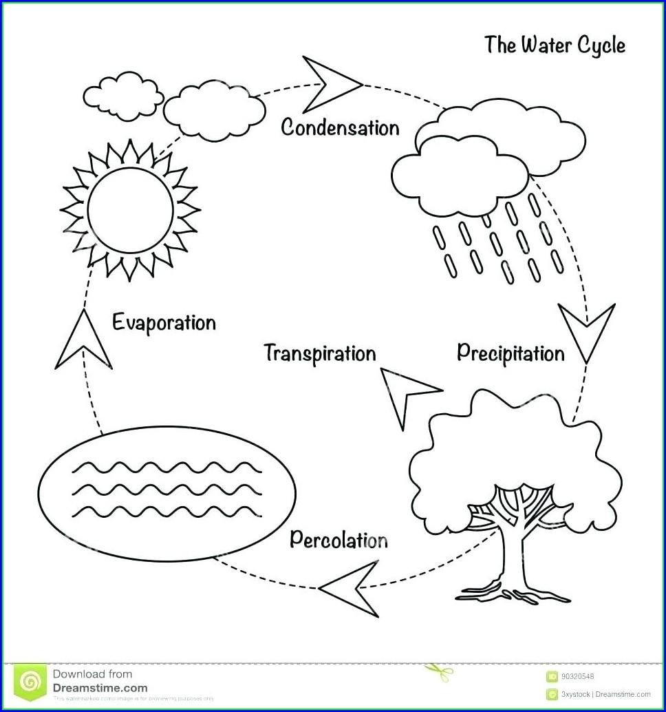 Water Cycle Diagram Blank Worksheet