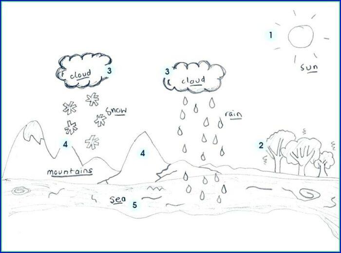 Water Cycle Worksheet Blank