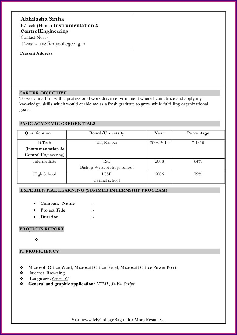 Word Document Fresher Resume Format Download In Ms Word
