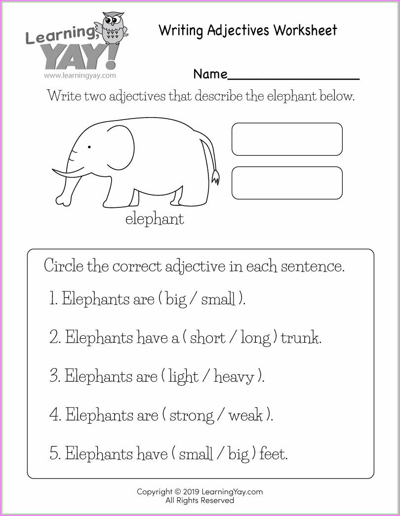 1st Grade Describing Words Worksheets Kindergarten