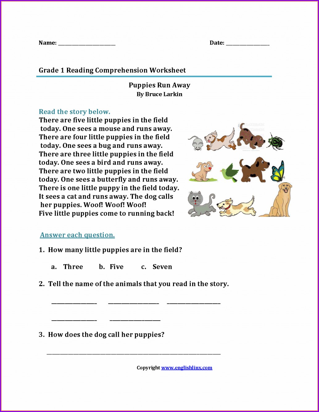 1st Grade Reading Comprehension Worksheet