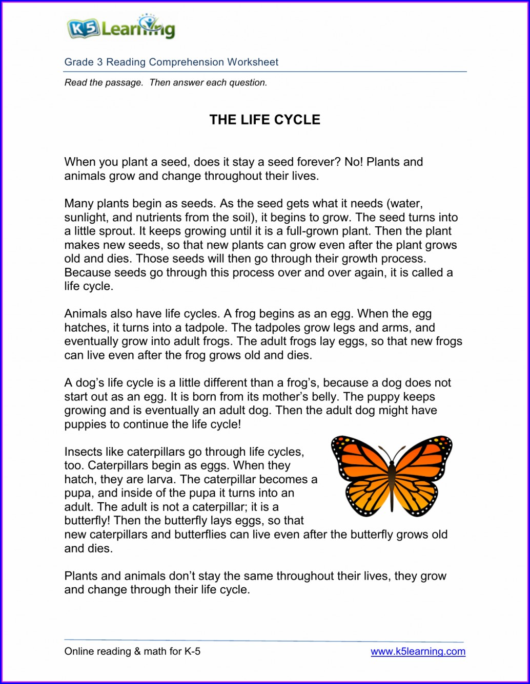 3rd Grade Life Cycle Worksheet