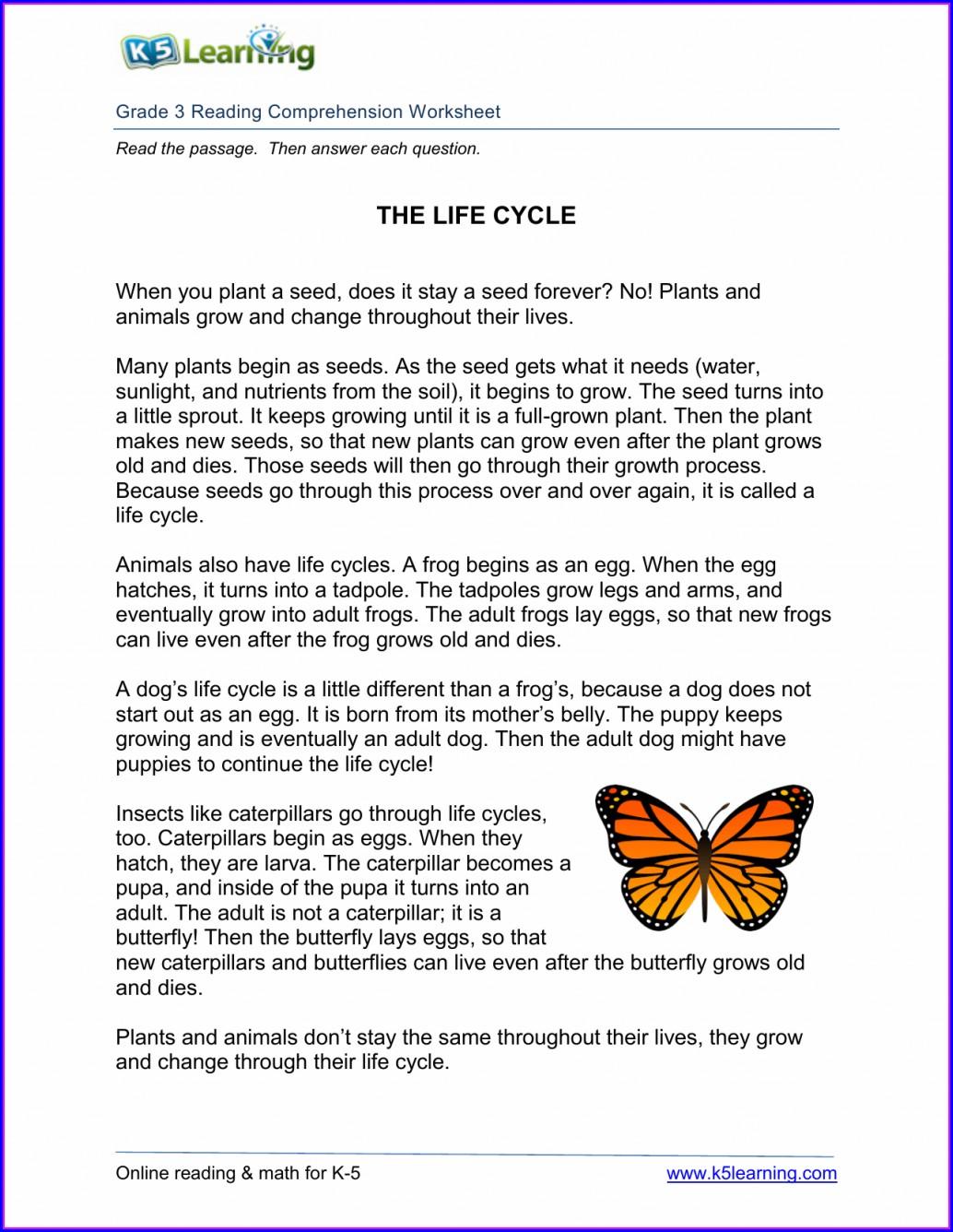 3rd Grade Life Cycle Worksheet