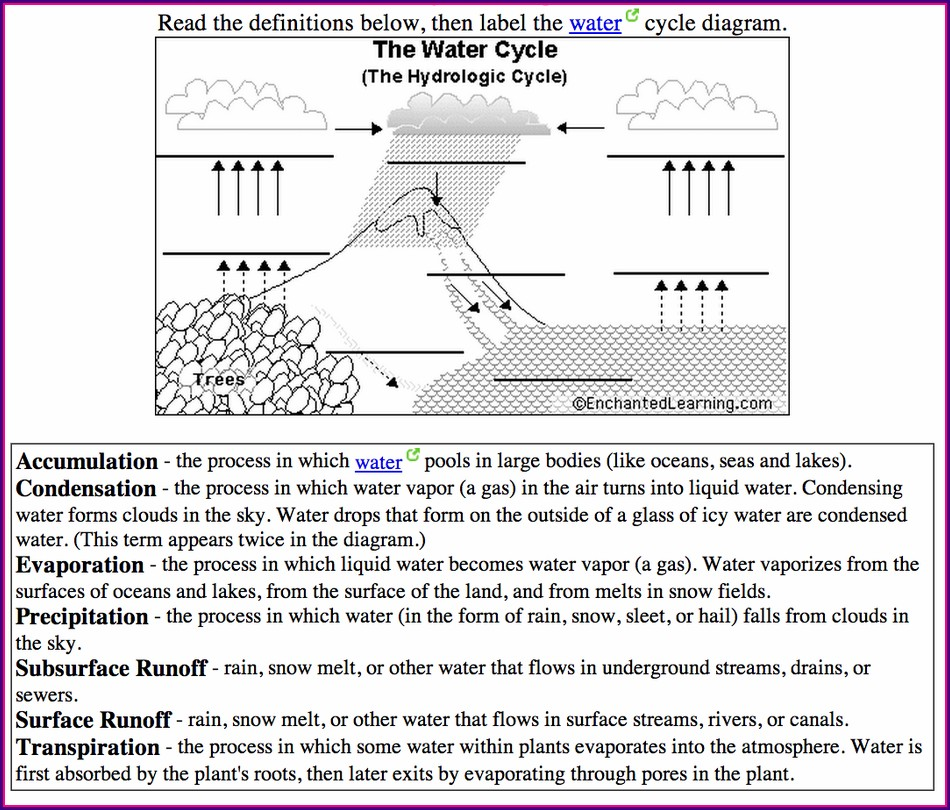 4th Grade Water Cycle Quiz Worksheet