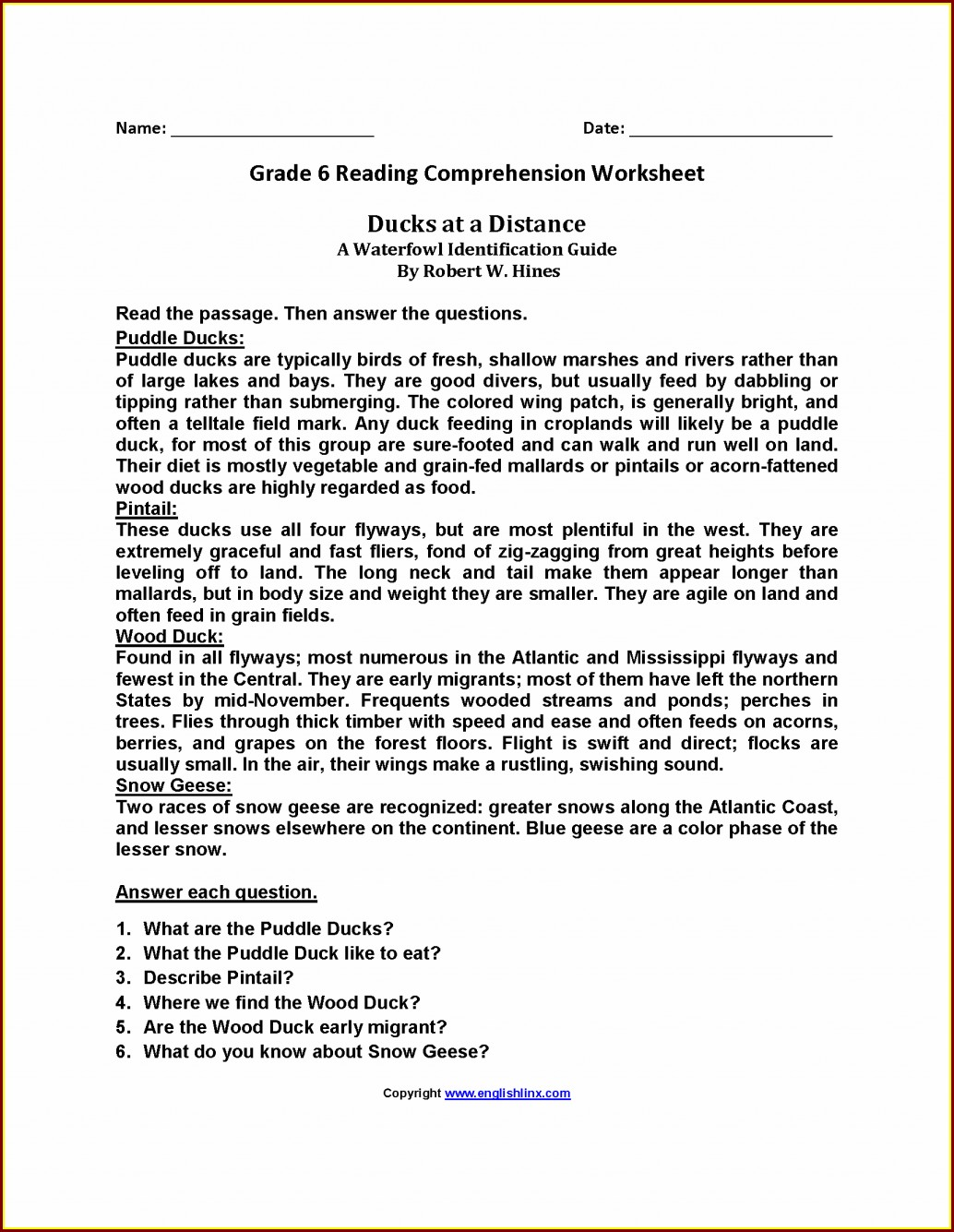 6th Grade Comprehension Worksheet