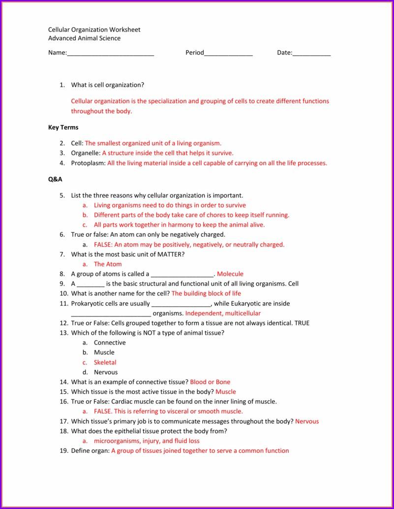 Basic Animal Science Worksheet Answer Key