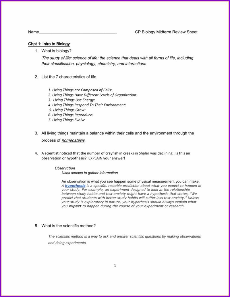 Bozeman Scientific Method Worksheet