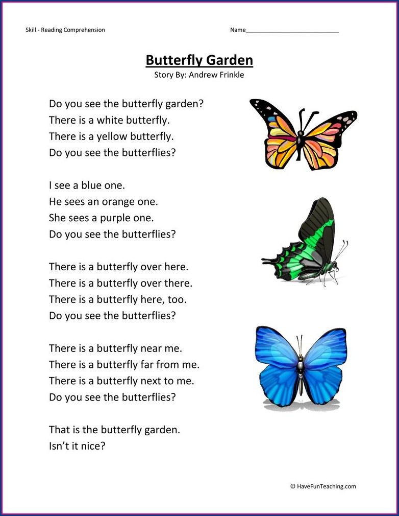 Butterfly Worksheet Second Grade