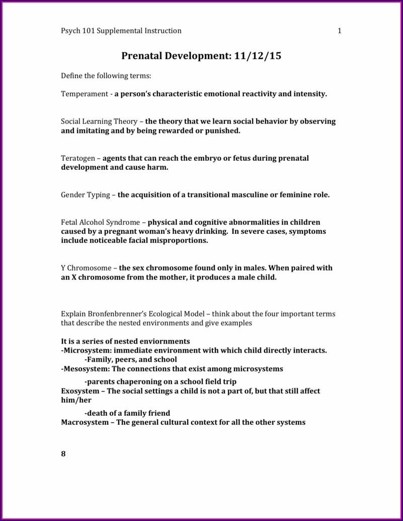 Child Development Worksheet Answers