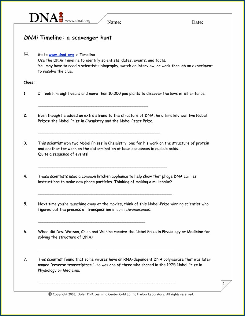 Dna Timeline Worksheet Answers