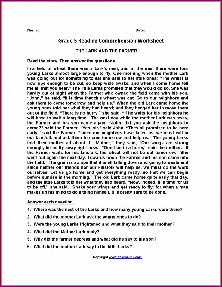 English Comprehension Worksheets For Grade 5