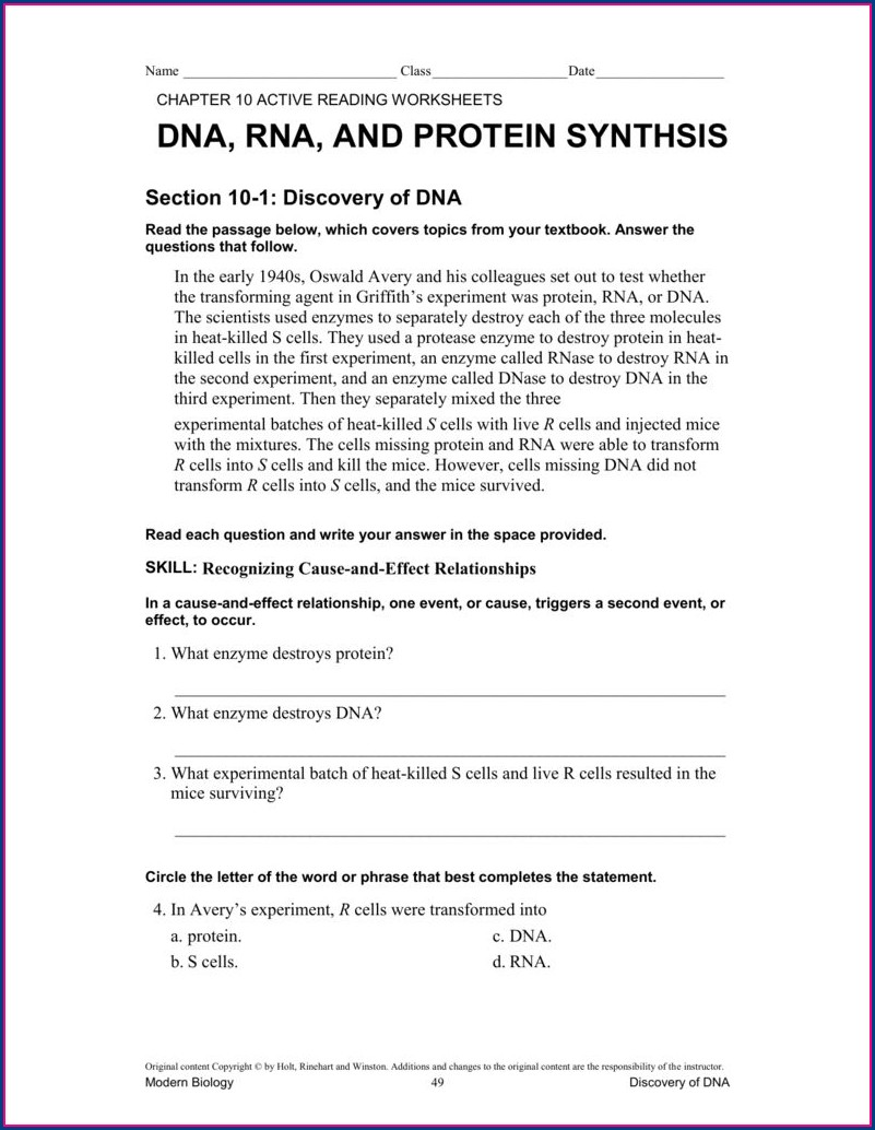 Enzyme Reading And Worksheet