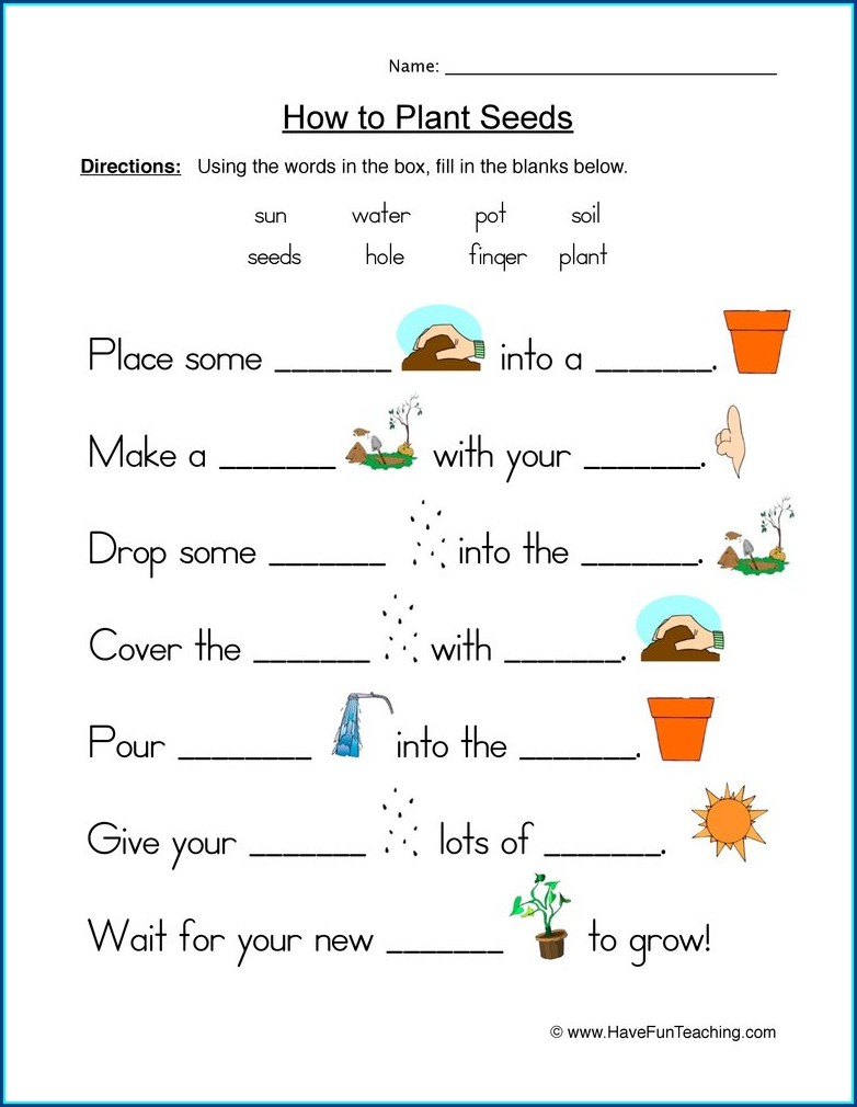 First Grade Worksheet On Plants For Class 1