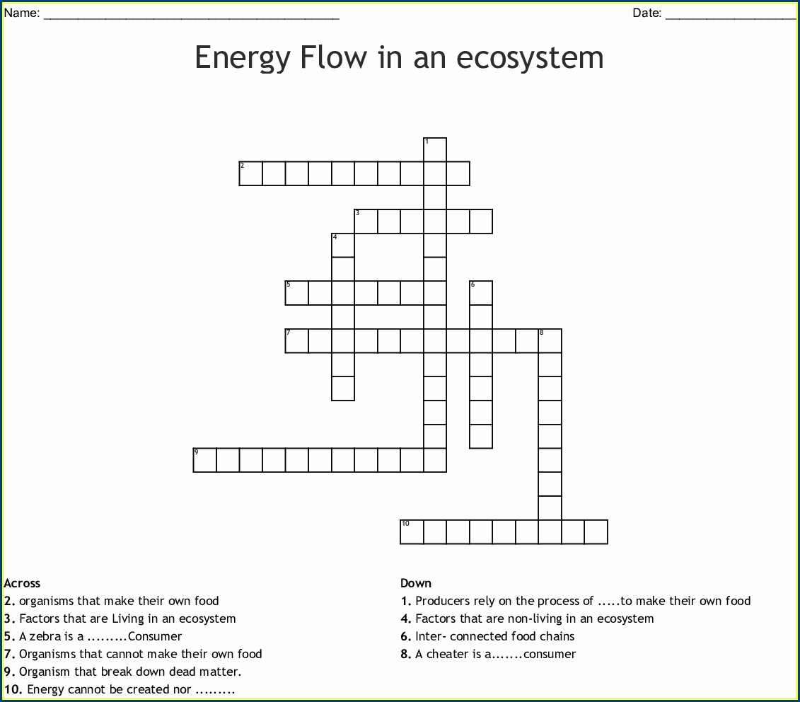 Food Chain Crossword Puzzle Worksheet Answers