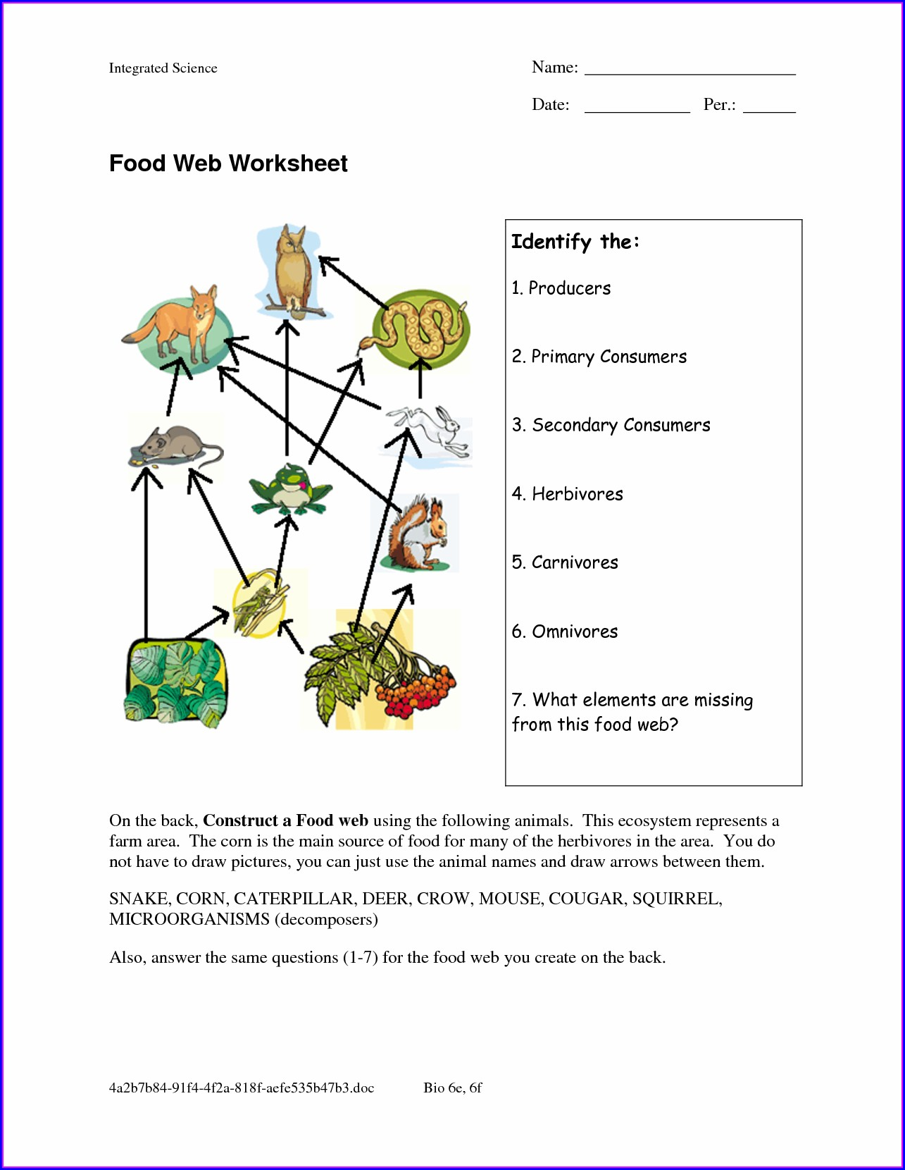 Food Web Review Worksheet Answer Key