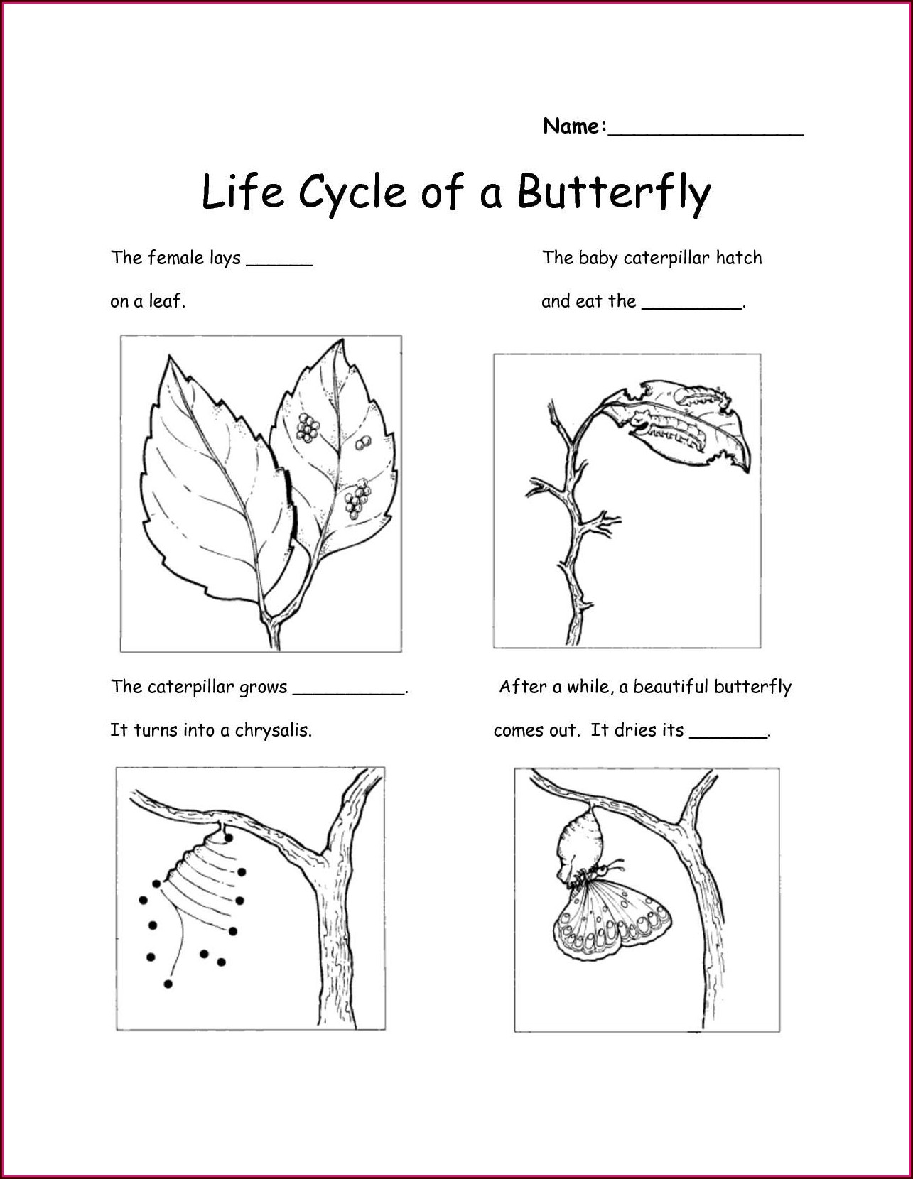 Free Printable Worksheets For Kindergarten Science