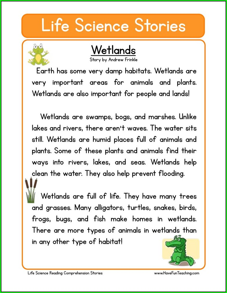 Habitat Worksheet Second Grade