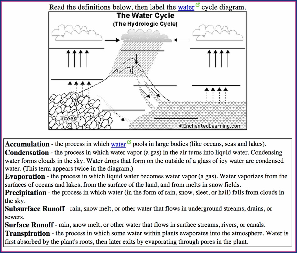 High School Water Cycle Worksheet Answer Key