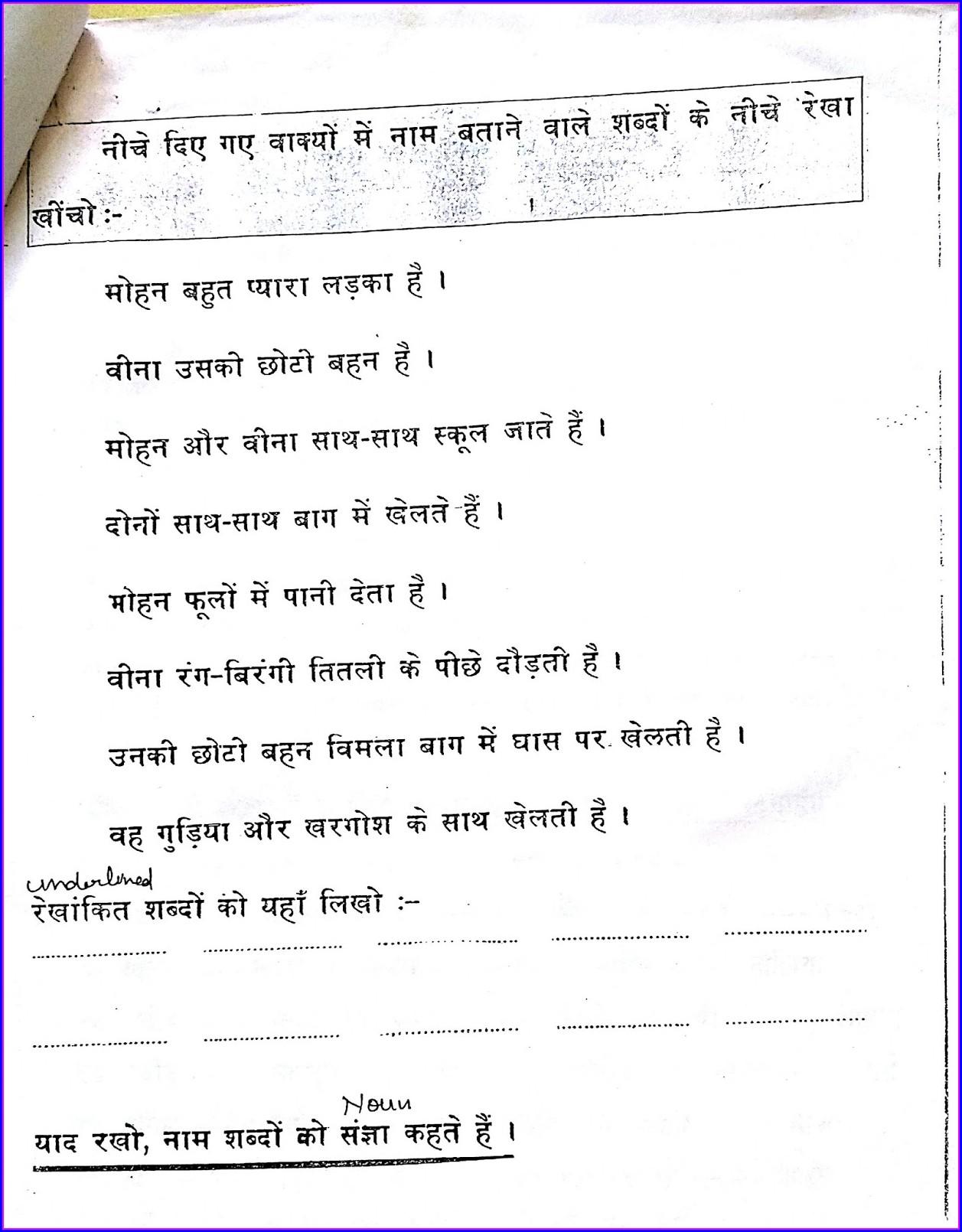 Hindi Nouns Worksheets For Grade 5
