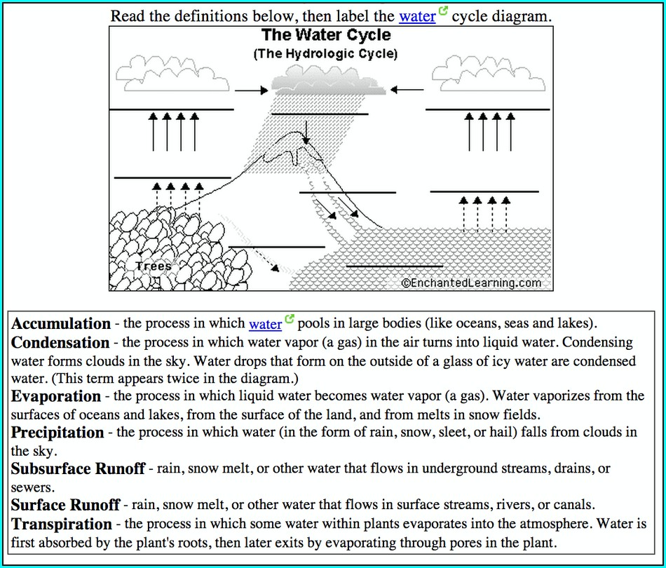 Hydrologic Cycle Worksheet Answer Key
