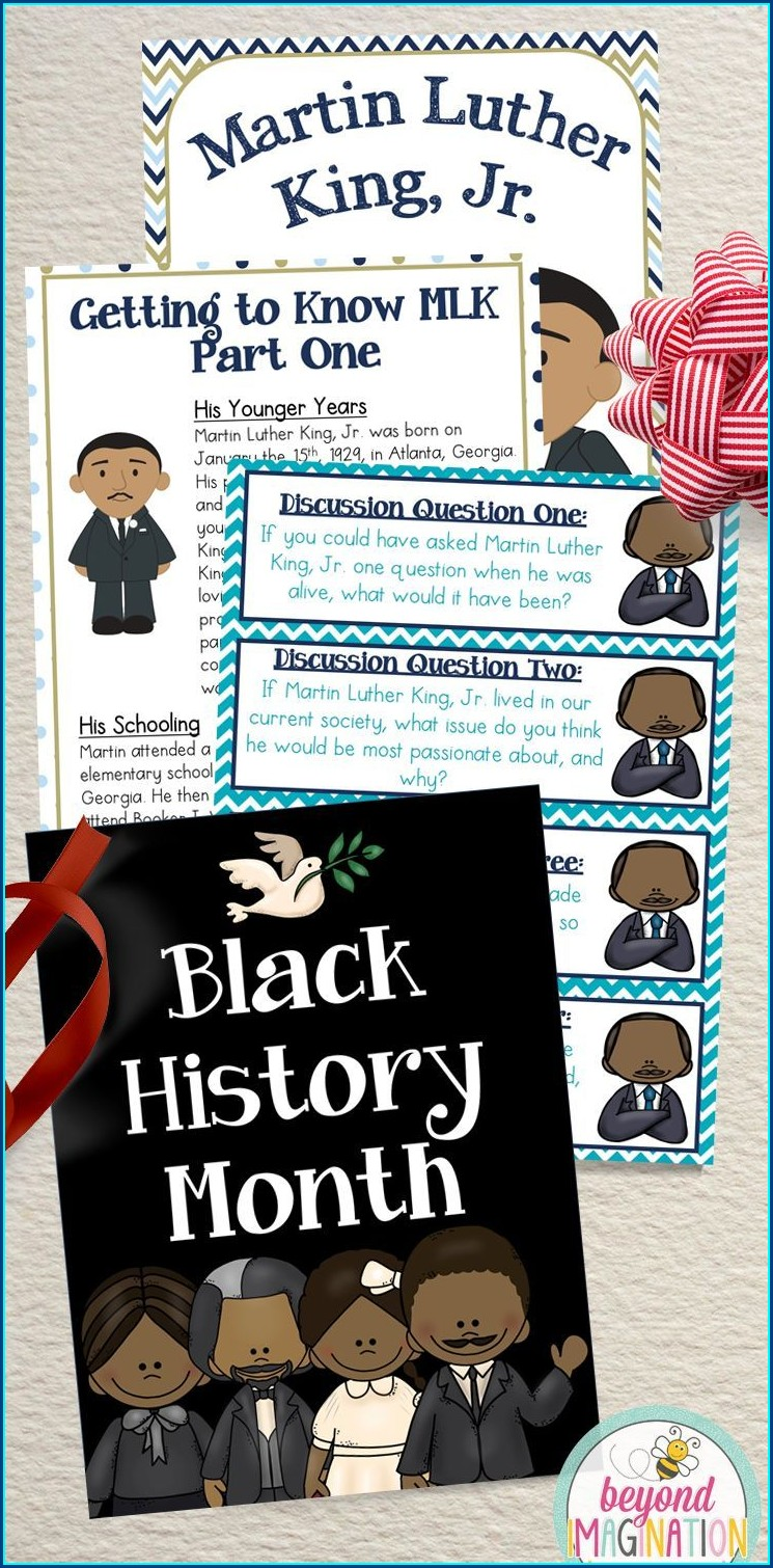 Martin Luther King Jr History Lesson