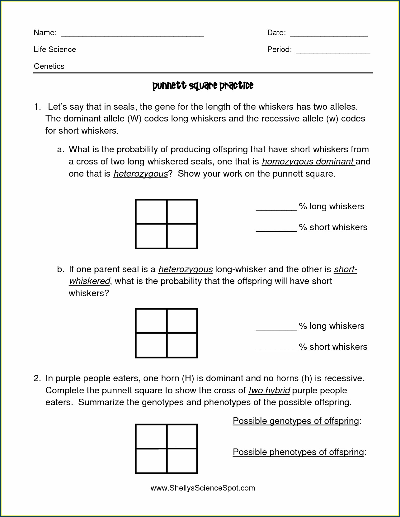 Punnett Square Generator Worksheet Answers