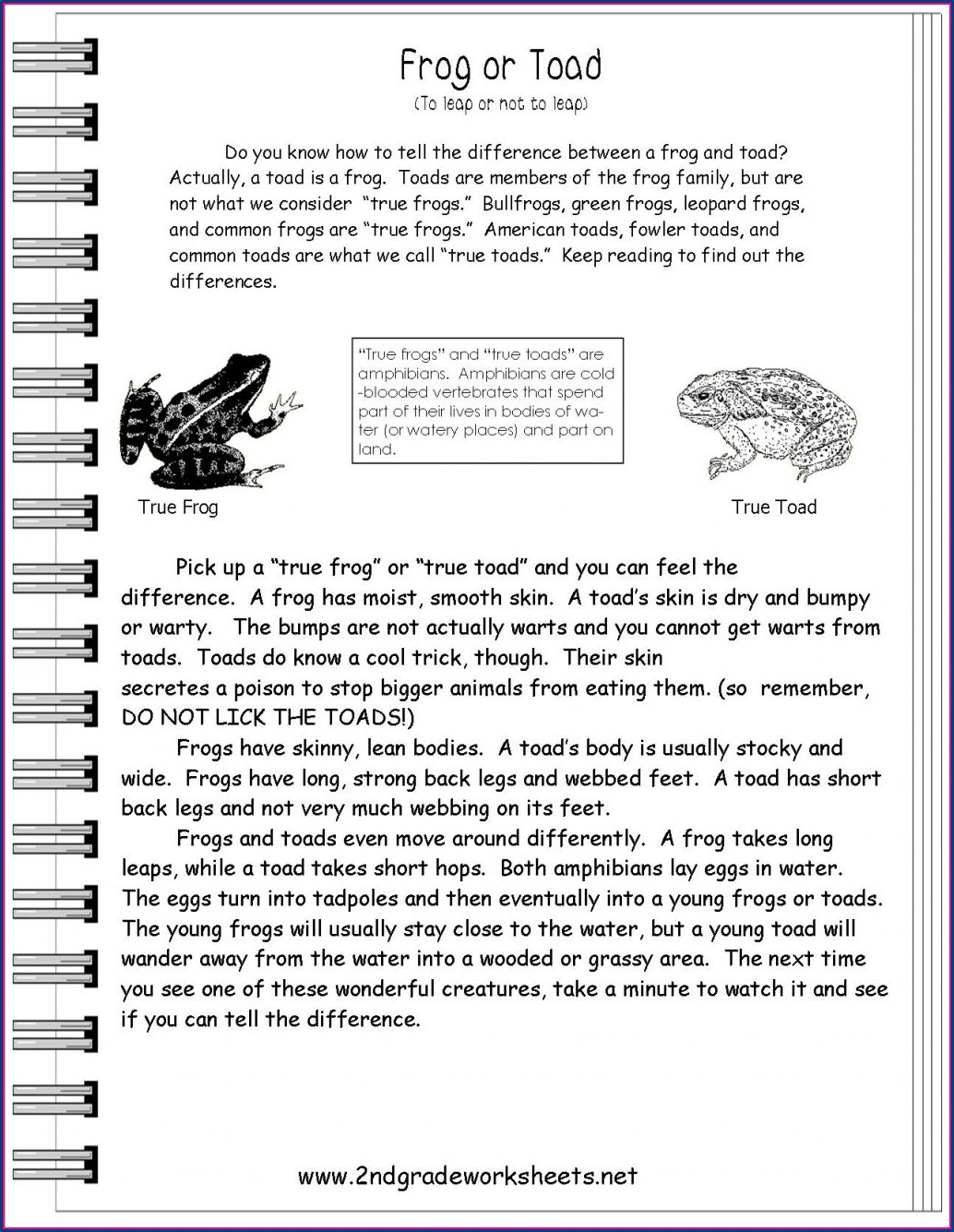 Reading Comprehension Exercises With Answers Pdf