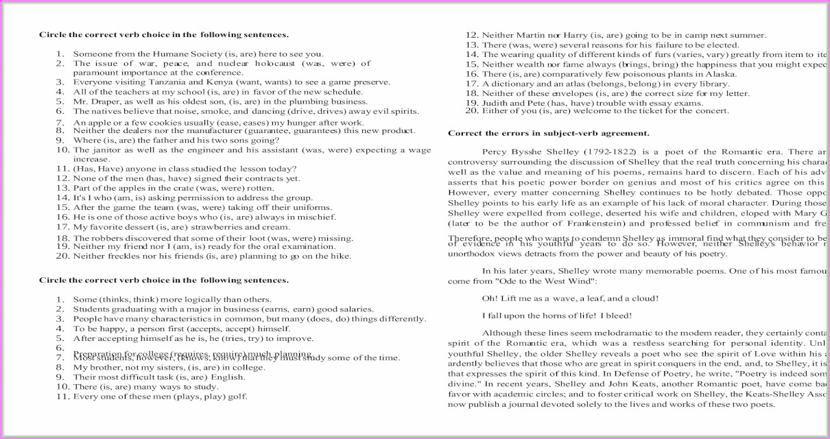 Subject Verb Agreement Quiz Pdf