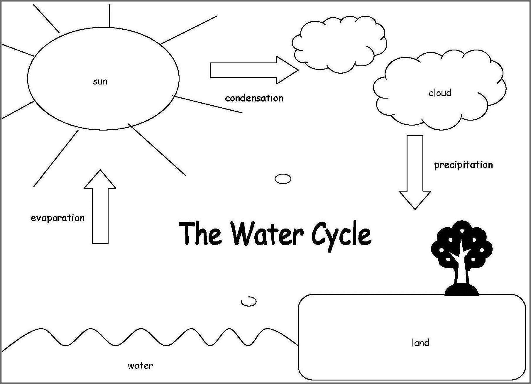 Water Cycle Steps Worksheet