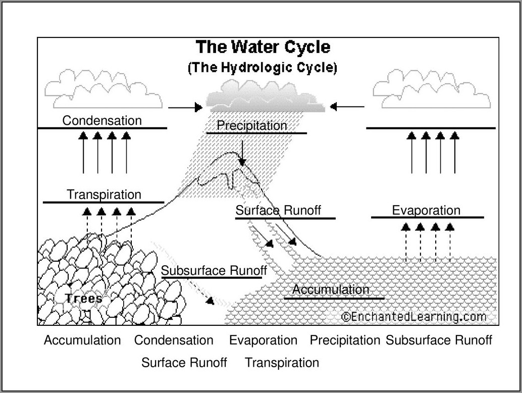 Water Cycle Worksheet Enchanted Learning