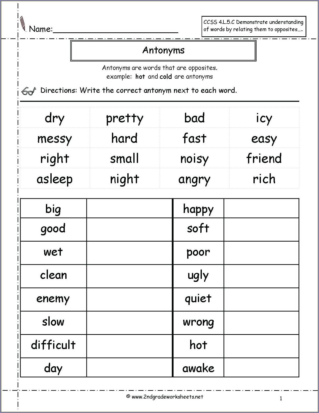 3rd Grade Homonyms Worksheets