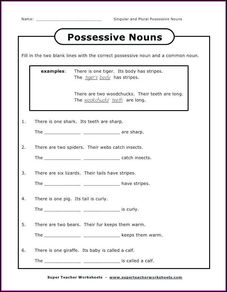 3rd Grade Noun Worksheets Pdf