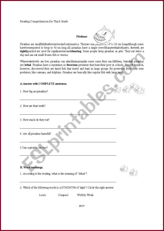 3rd Grade Worksheet Reading Comprehension