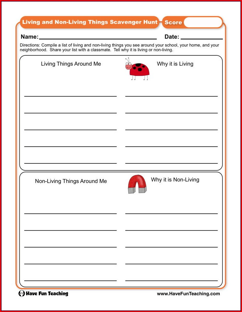 4th Grade Science Scavenger Hunt Worksheet