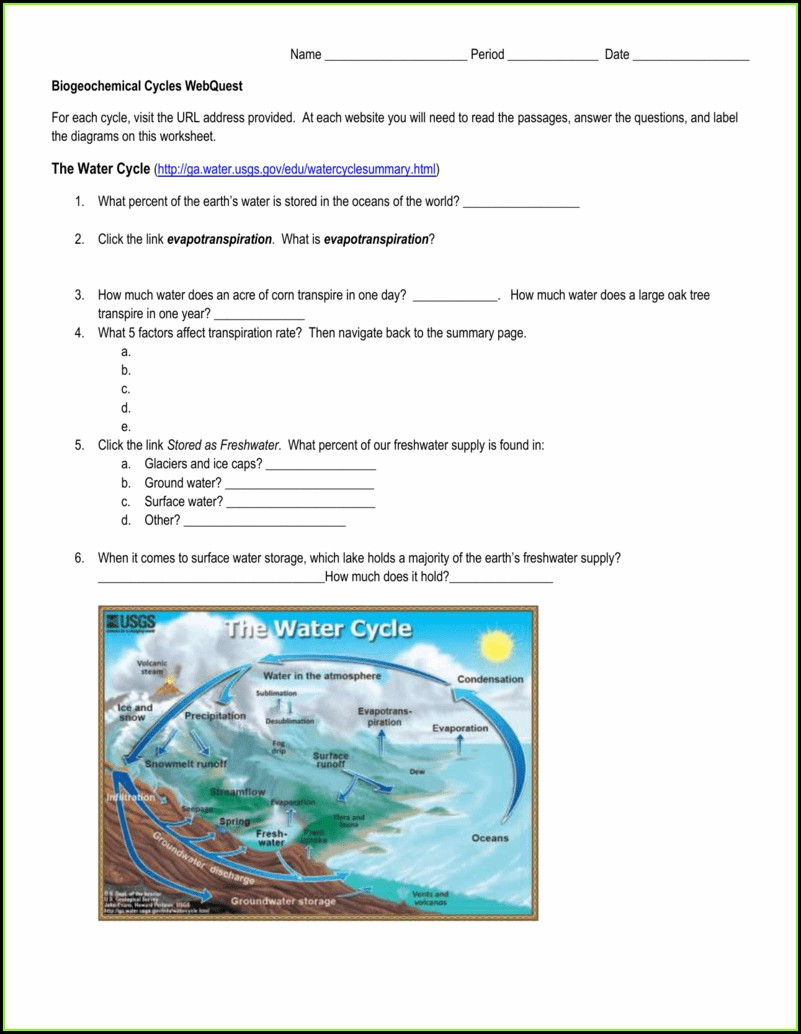 Biogeochemical Cycle Review Worksheet