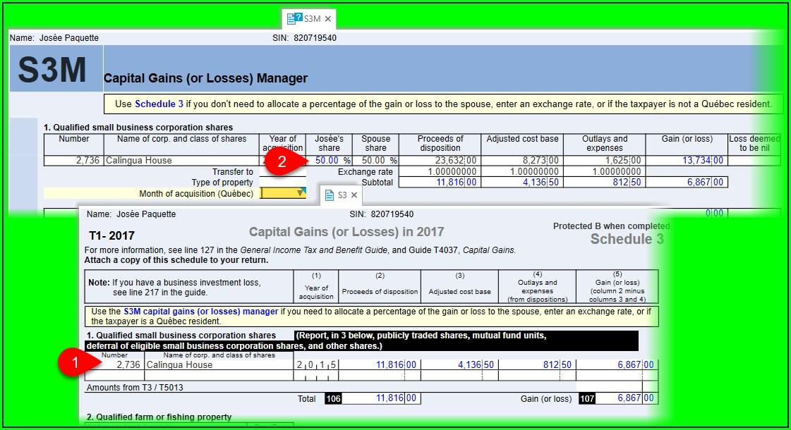 Capital Gain Transaction Worksheet Turbotax