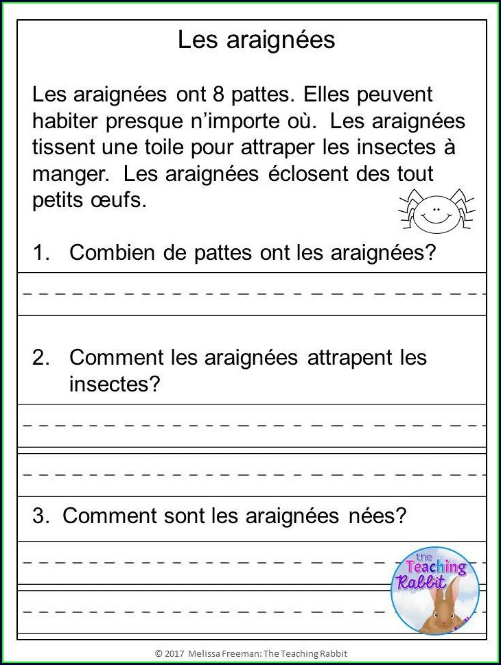 Comprehension Passages In French With Questions