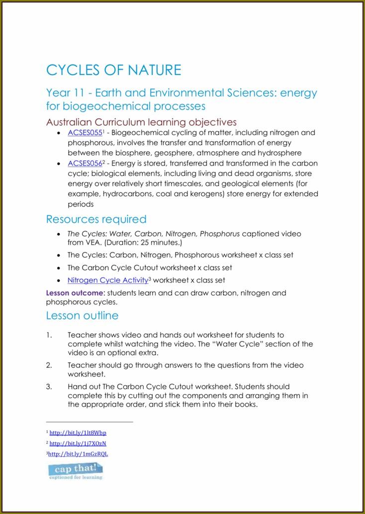 Cycle Of Matter Worksheet