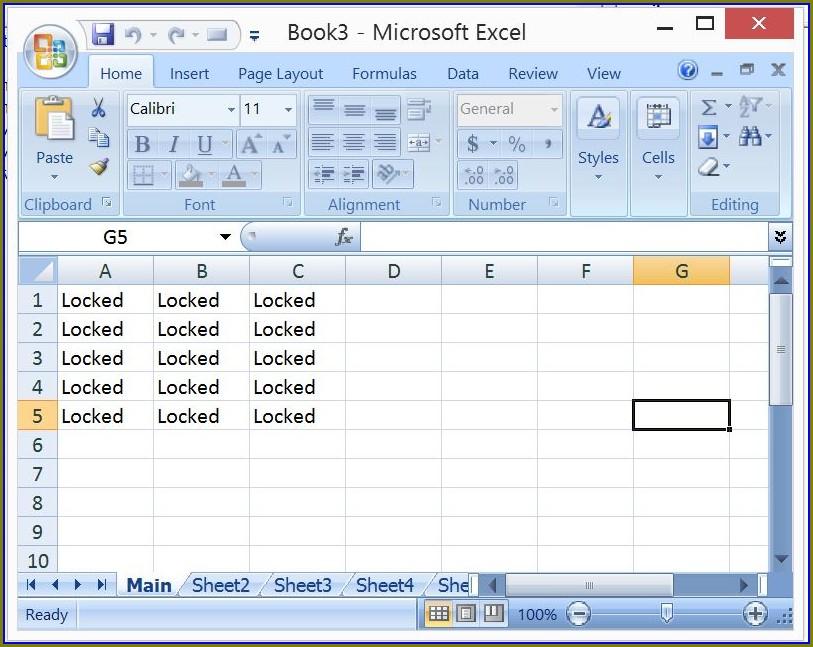 Excel 2007 Vba Protect Worksheet