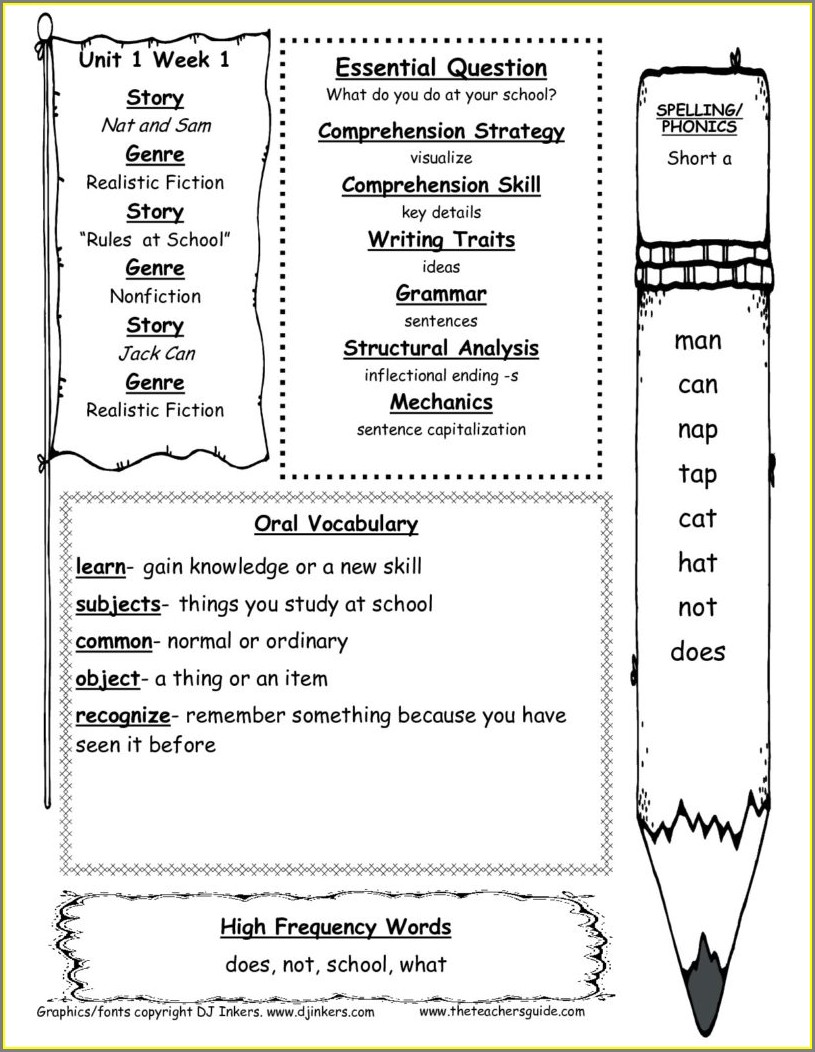 First Grade Science Experiment Worksheet