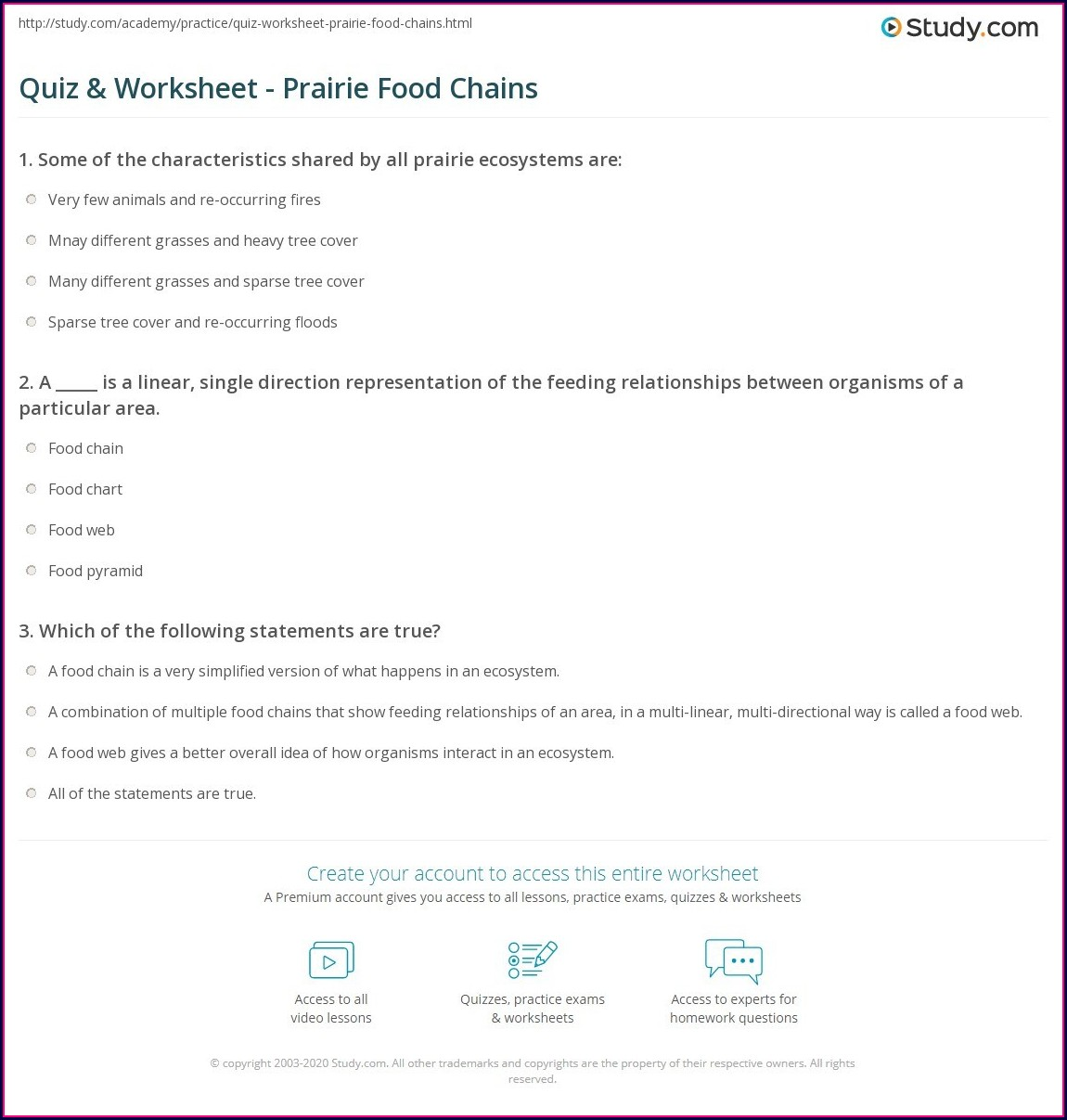 Food Chain Quiz Worksheet Answers