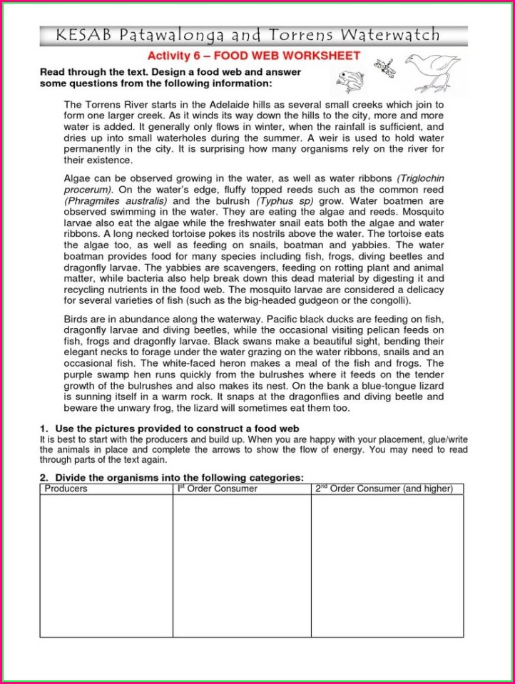 Food Chain Worksheet Cut And Paste