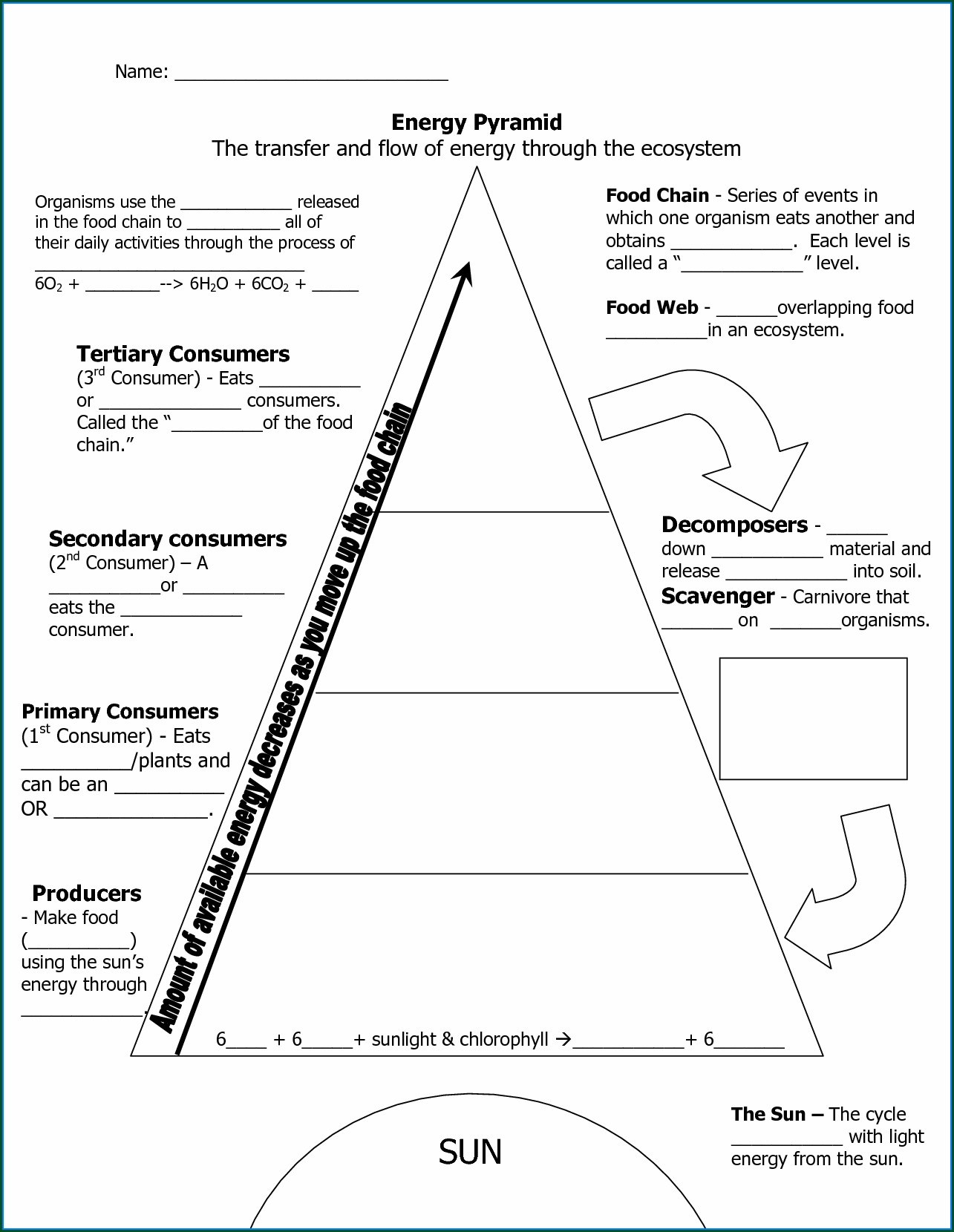 Food Pyramid Worksheet Middle School