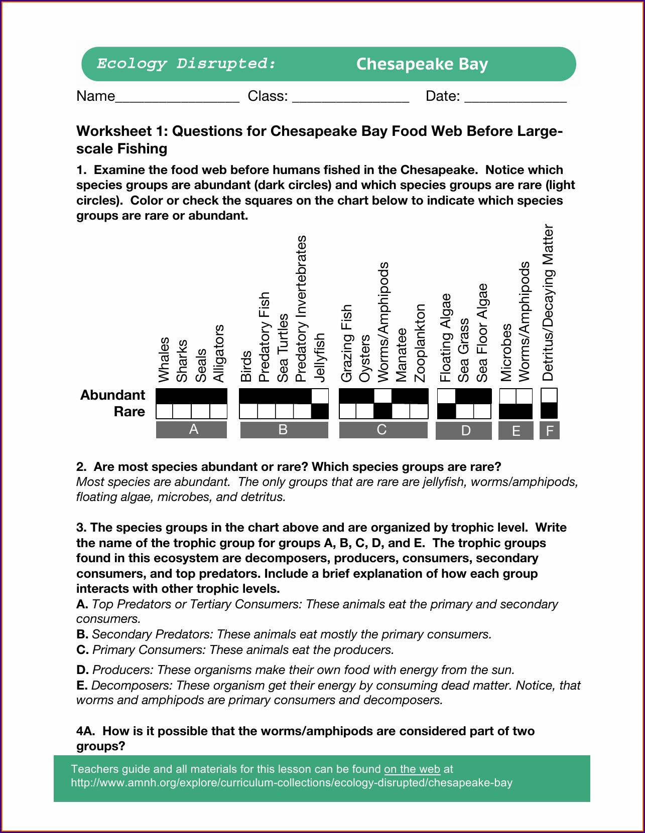 Food Web Questions Worksheet